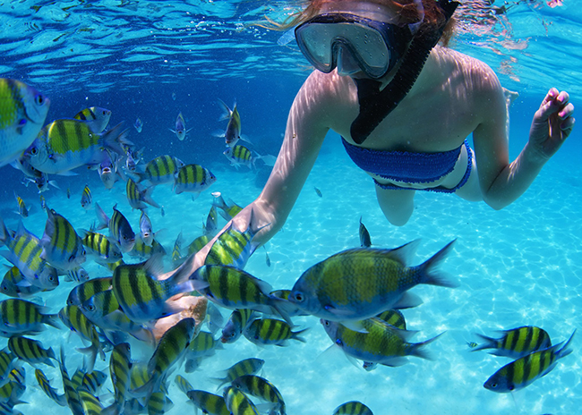 Carol swimming between the fish amazed by the blue and clearness of the water in Cozumel.