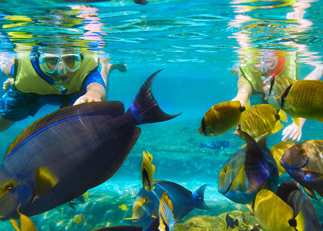 Karen very happy to snorkel among many colorful fish during her tour to el cielo.